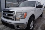 This White 4 door XLT Pickup features  a 6 Spd Automatic transmission, a  5.0L  V 8 engine, and has 99290 kilometres on it.