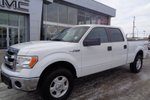 This White 4 door XLT - 4x4! Built For Alberta! Pickup features a Black interior a 6 Spd Automatic transmission, a  5.0L  V 8 engine, and has 99290 kilometres on it.