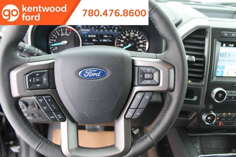 2019 Ford Expedition for sale in Edmonton, Alberta