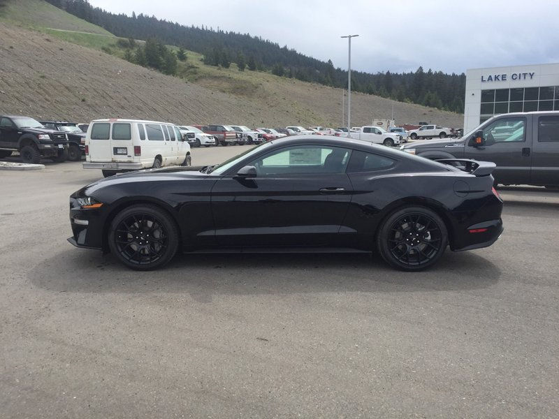 2018 Ford Mustang for sale in Williams Lake, British Columbia
