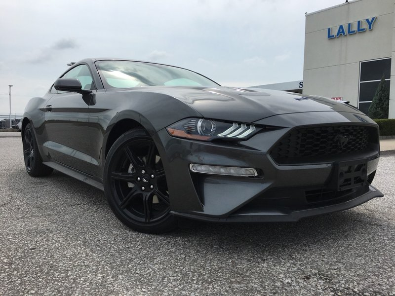 2019 Ford Mustang for sale in Leamington, Ontario