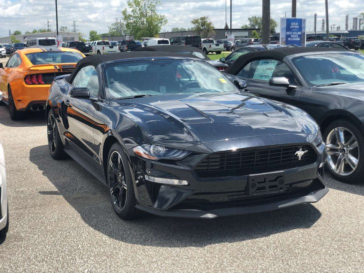 Mustang For Sale Ontario >> 2019 Ford Mustang For Sale In Sarnia Ontario