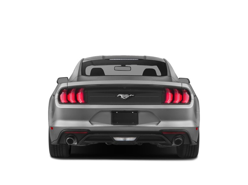 2019 Ford Mustang for sale in Kamloops, British Columbia
