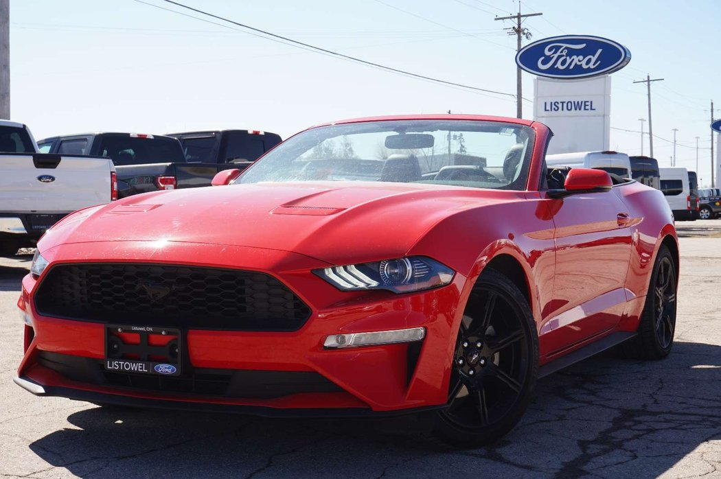 Mustang For Sale Ontario >> 2018 Ford Mustang For Sale In Listowel