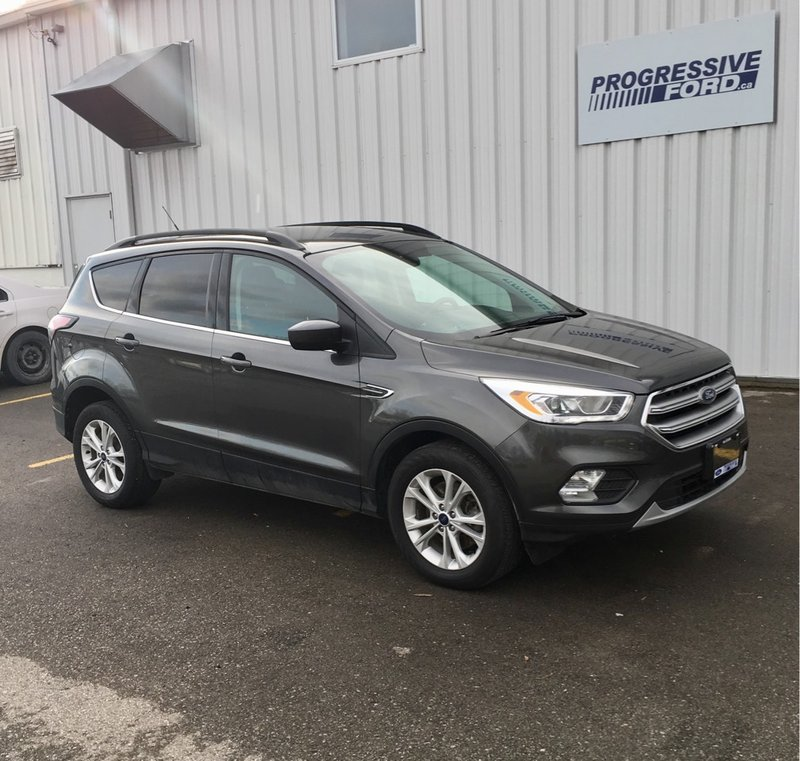 2017 Ford Escape for sale in Wallaceburg, Ontario