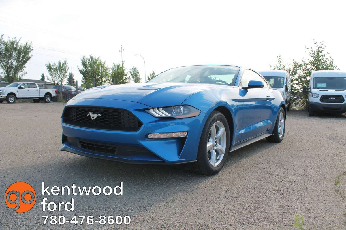 Up your game in our 2019 ford mustang ecoboost fastback in velocity blue feel the turbocharged 2 3 litre ecoboost 4 cylinder offering 310hp while connected