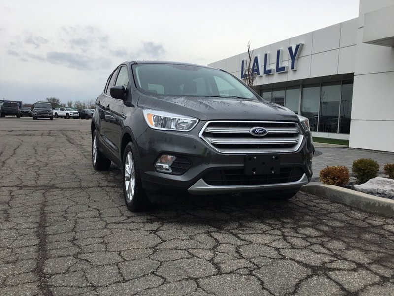 2019 Ford Escape for sale in Tilbury, Ontario