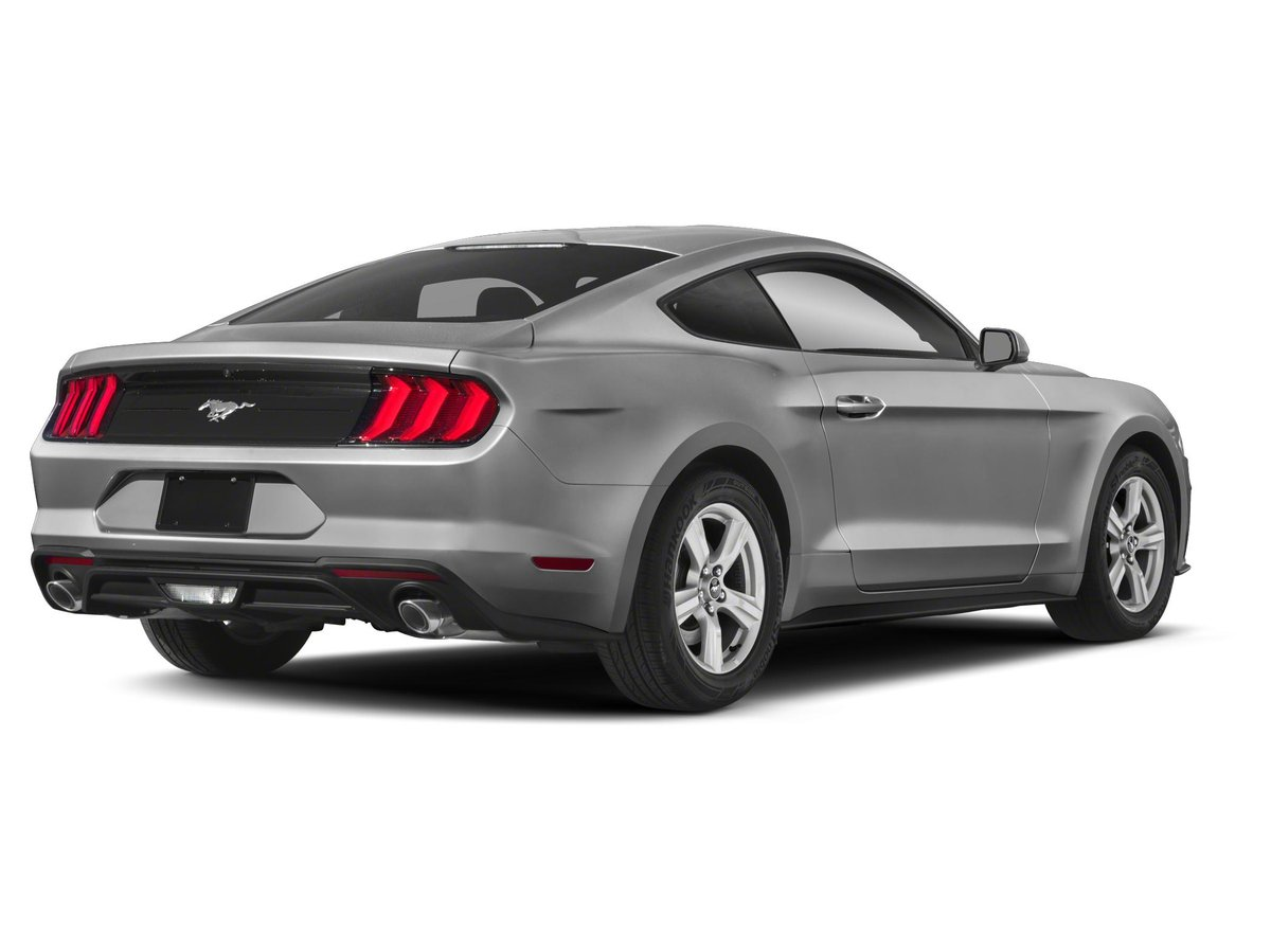 Mustang For Sale Ontario >> 2019 Ford Mustang For Sale In Mississauga
