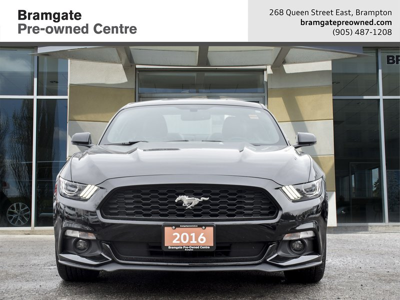 2016 Ford Mustang for sale in Brampton, Ontario