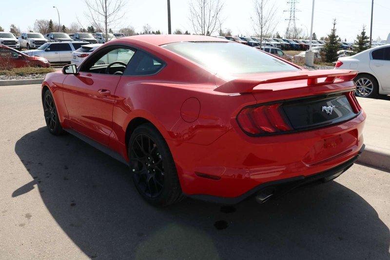 2018 Ford Mustang for sale in Edmonton, Alberta