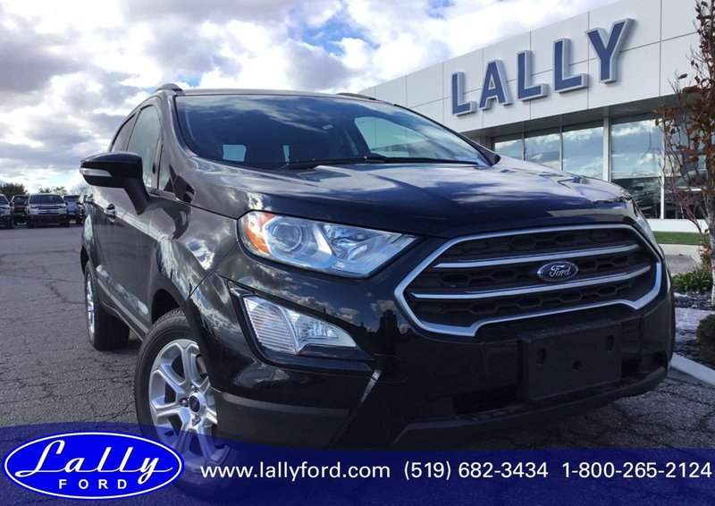 2018 Ford EcoSport for sale in Tilbury, Ontario