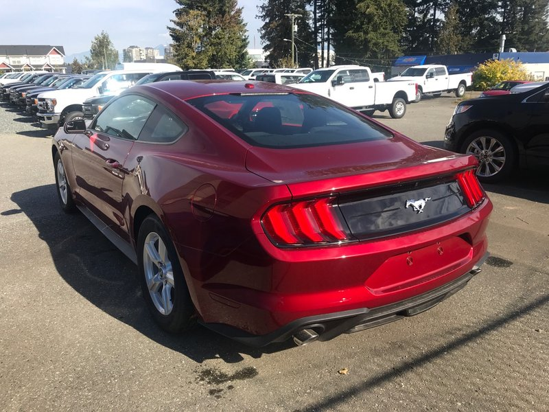 2019 Ford Mustang for sale in Abbotsford, British Columbia