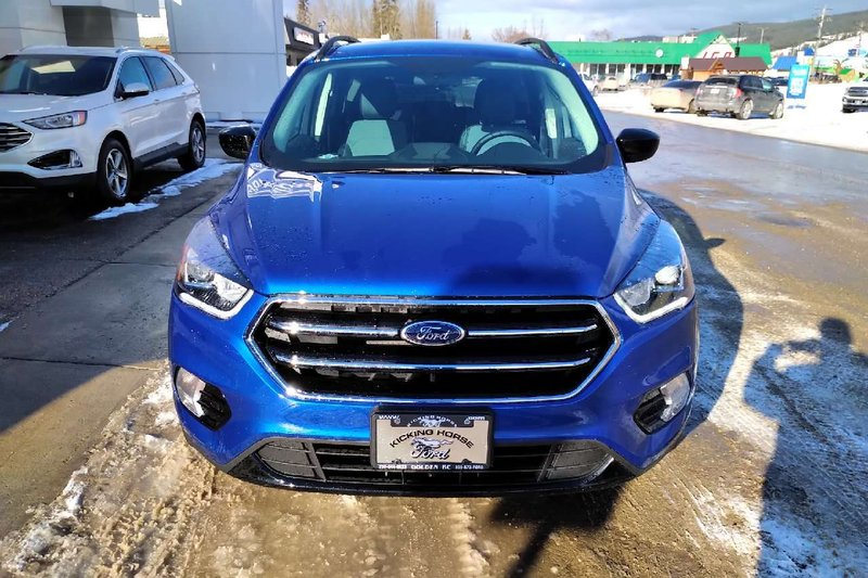 2019 Ford Escape for sale in Golden, British Columbia