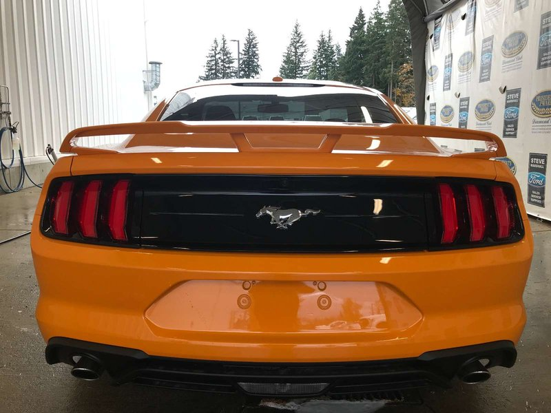 2019 Ford Mustang for sale in Campbell River, British Columbia