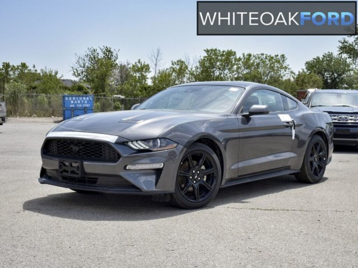 Mustang For Sale Ontario >> 2019 Ford Mustang For Sale In Mississauga Ontario