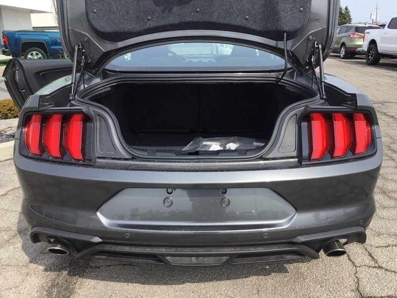 2019 Ford Mustang for sale in Tilbury, Ontario