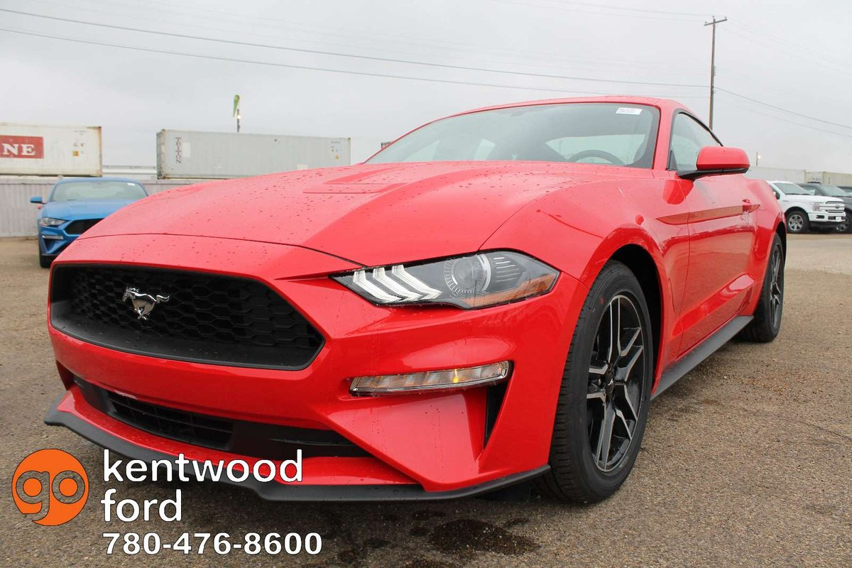 Built for the road our 2019 ford mustang ecoboost fastback is irresistible in race red feel the turbocharged 2 3 litre ecoboost 4 cylinder offering 310hp