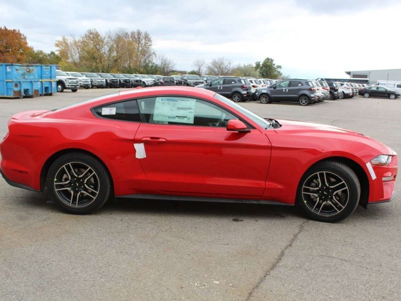 2019 Ford Mustang for sale in Mississauga, Ontario