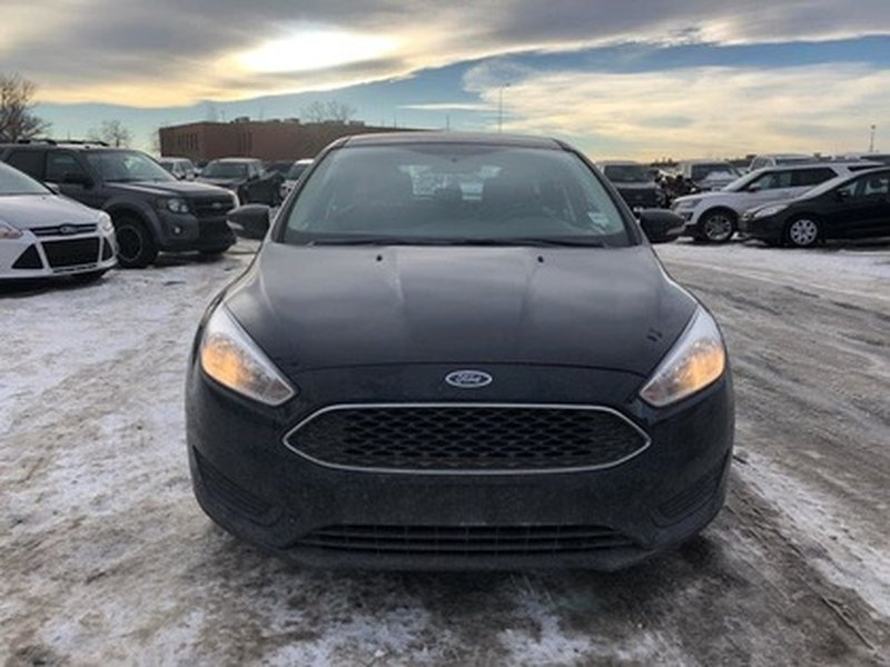 2016 Ford Focus for sale in Calgary, Alberta