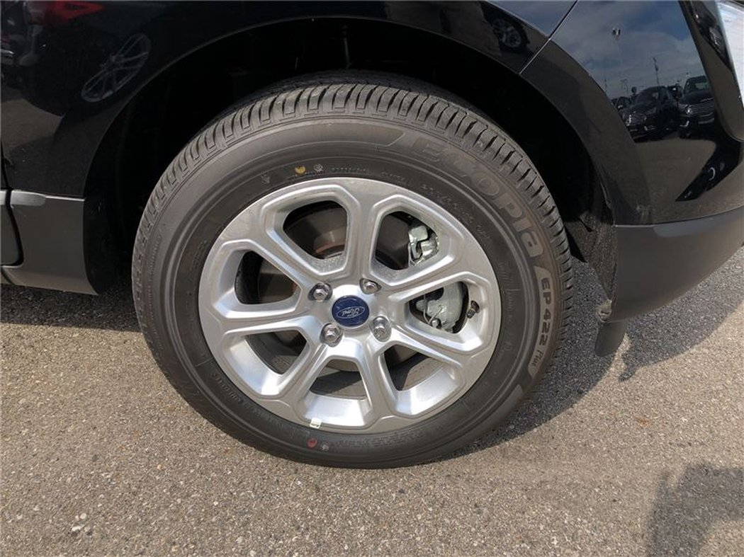 2018 Ford EcoSport for sale in Chatham