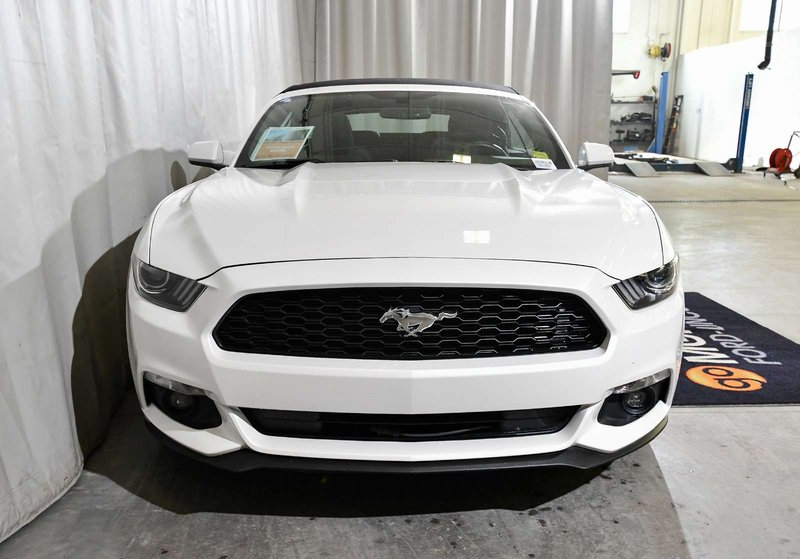 2017 Ford Mustang for sale in Red Deer, Alberta