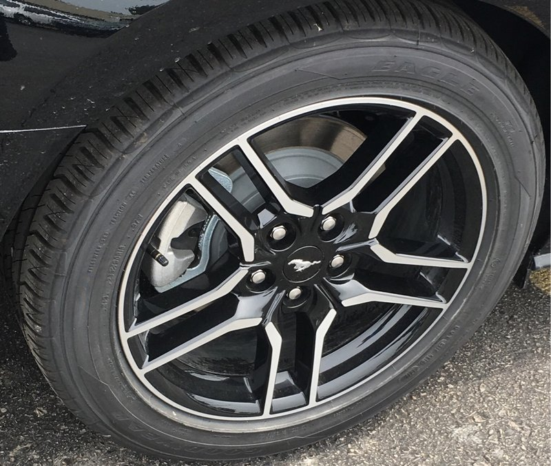 2019 Ford Mustang for sale in Wallaceburg, Ontario