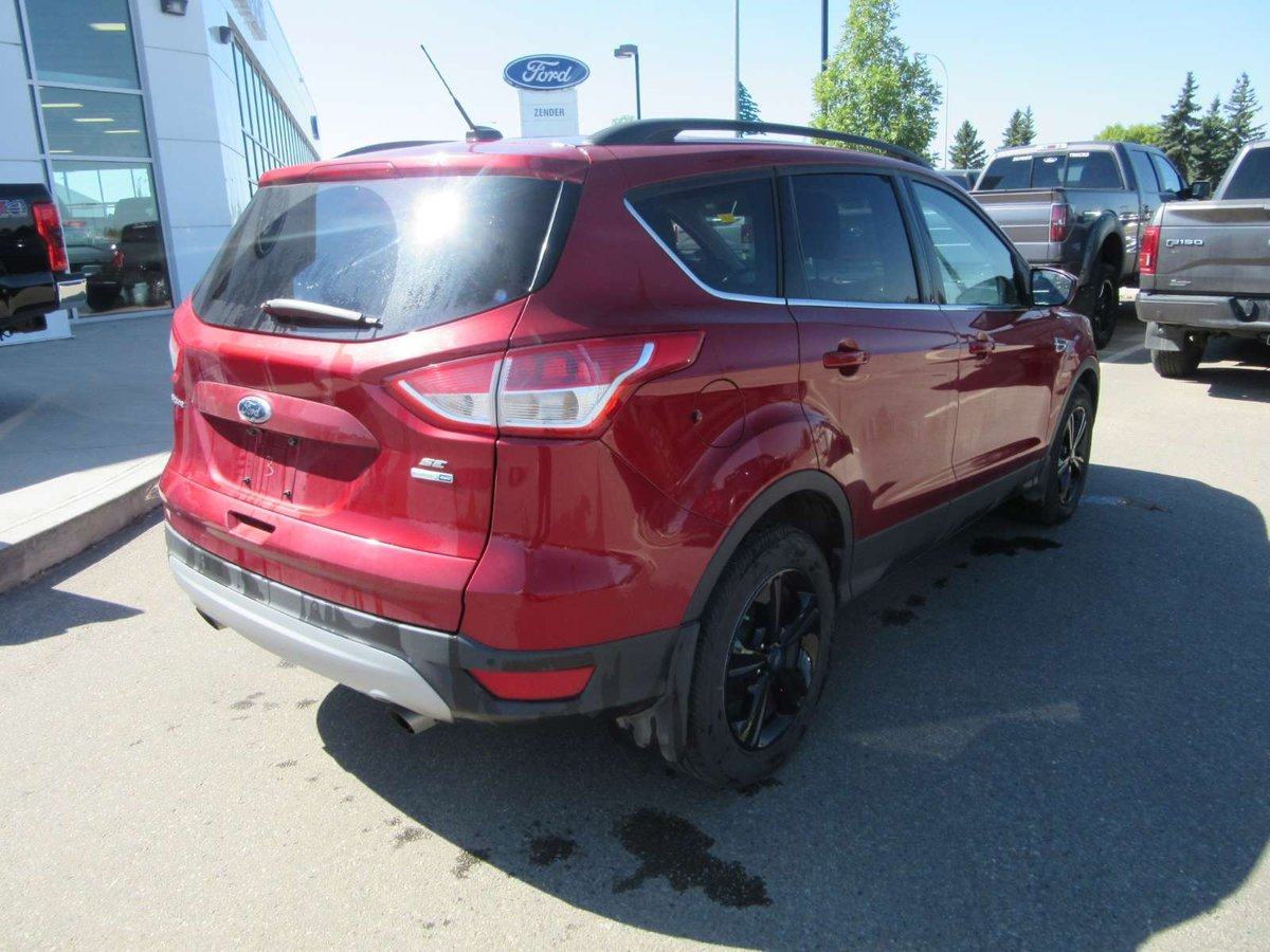 2014 ford escape for sale in spruce grove. Black Bedroom Furniture Sets. Home Design Ideas