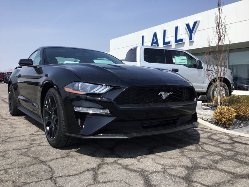 2018 Ford Mustang for sale in Tilbury, Ontario